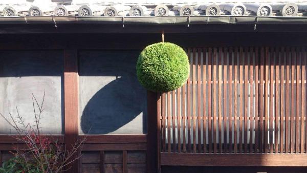 日本酒の杉玉(酒林)の画像