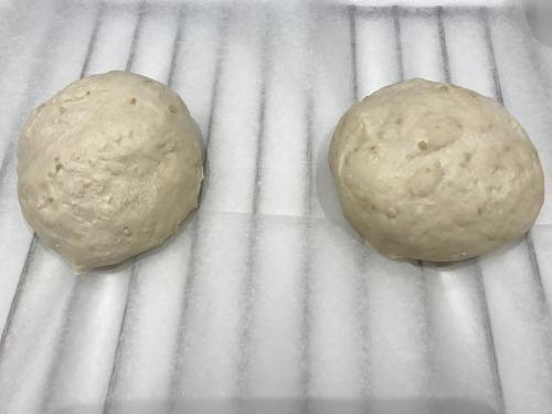 日本酒酵母を使ったパン作りの発酵している画像