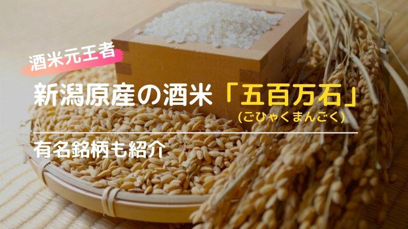 酒米の違いから見る日本酒!スッキリ飲みやすい新潟県の「五百万石」の画像