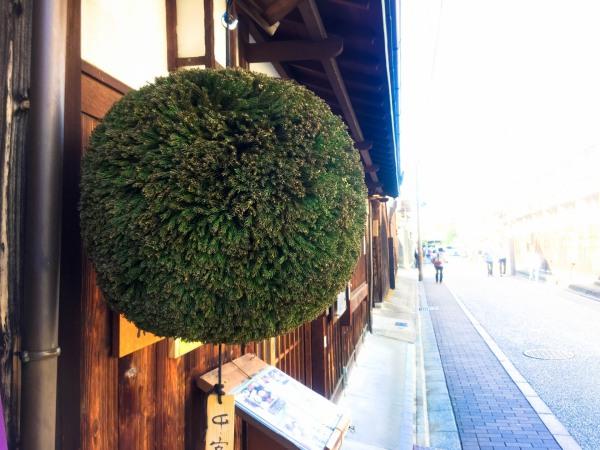 日本酒の新酒の季節の風物詩の杉玉(酒林)の画像